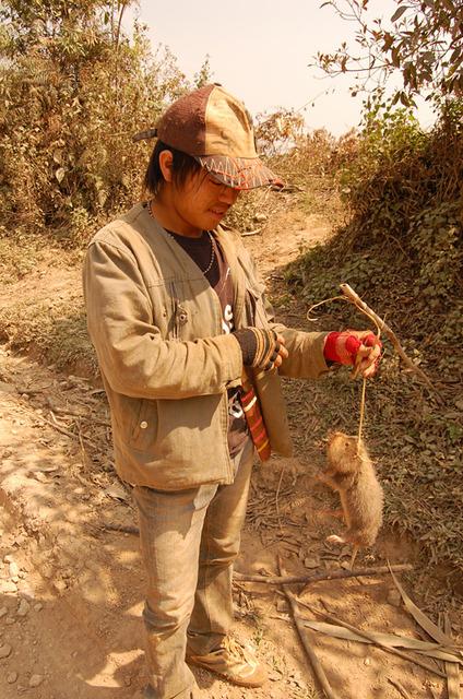 Чувак поймал крысу