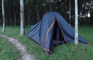 Устанавливать палатку в зарослях каучуковых деревьев - опасная идея. на таких деревьях обитают маленькие и ядовитые змейки