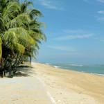 Шикарный и пустой пляж на восточном побережье Малайзии