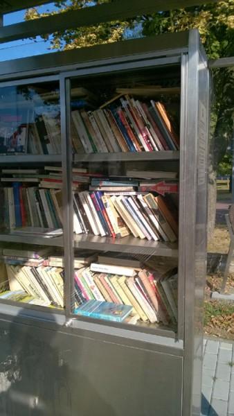 Местная бесплатная библиотека на остановке