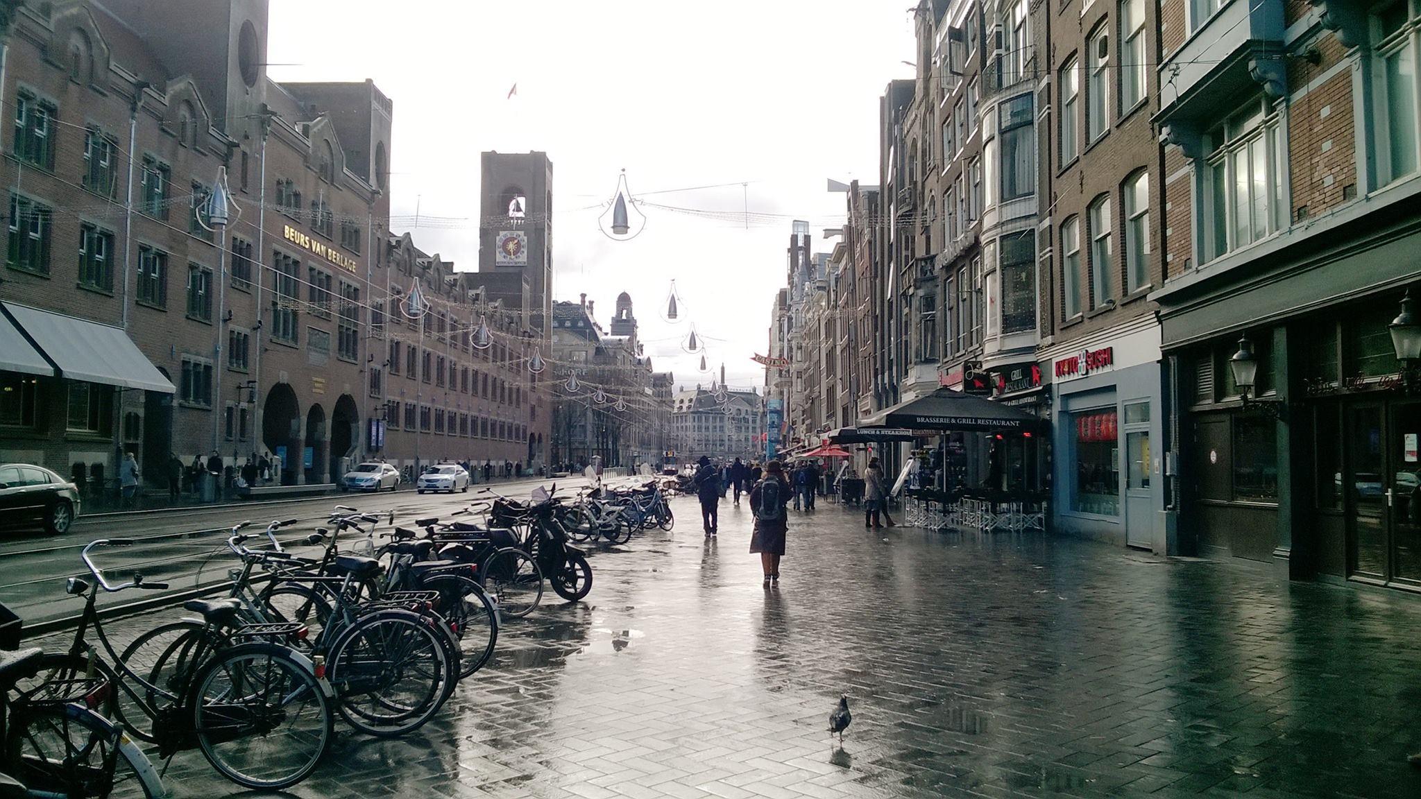 Велосипедный Амстердам одним глазком