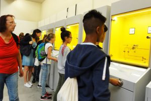школьники залипли на физических экспериментах